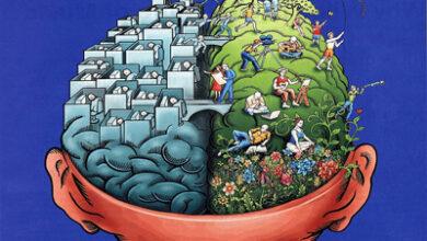 تصویر از مراحل رسیدن به عقل چیست ؟